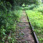 関金旧線路ノルディックウォーク
